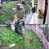 Camera quan sát giá rẻ cho gia đình tai Hóc Môn